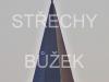 strechy-buzek-107