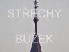 strechy-buzek-108