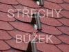 strechy-buzek-38