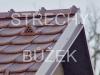 strechy-buzek-59