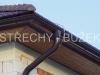 strechy-buzek-72