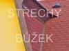 strechy-buzek-91