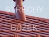 strechy-buzek-94